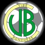 Logo VIBE ritagliato