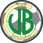 Logo VIBE 2